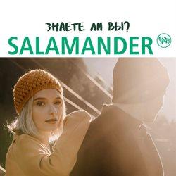 Salamander katalógus ( 11 nap )
